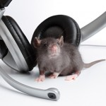 mmw-mice-music-032212
